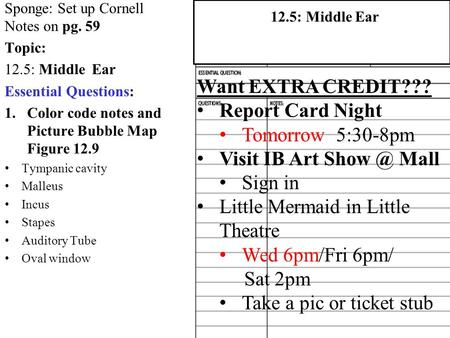 Little Mermaid in Little Theatre Wed 6pm/Fri 6pm/ Sat 2pm
