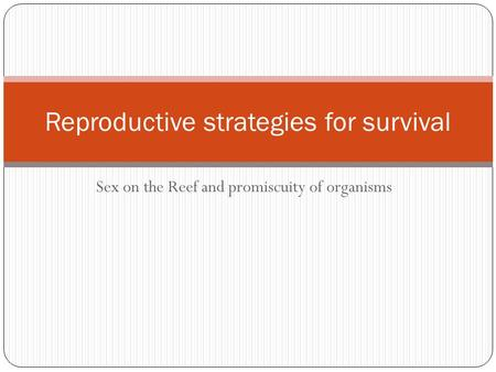 Sex on the Reef and promiscuity of organisms Reproductive strategies for survival.