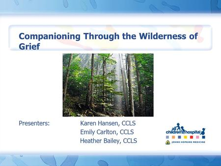 Companioning Through the Wilderness of Grief Presenters: Karen Hansen, CCLS Emily Carlton, CCLS Heather Bailey, CCLS.