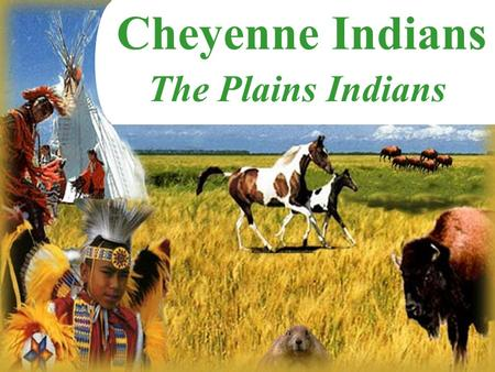 Cheyenne Indians The Plains Indians.