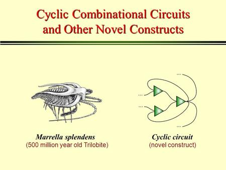 Cyclic Combinational Circuits and Other Novel Constructs Marrella splendensCyclic circuit (500 million year old Trilobite)(novel construct)