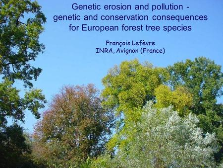 Genetic erosion and pollution - genetic and conservation consequences for European forest tree species François Lefèvre INRA, Avignon (France)