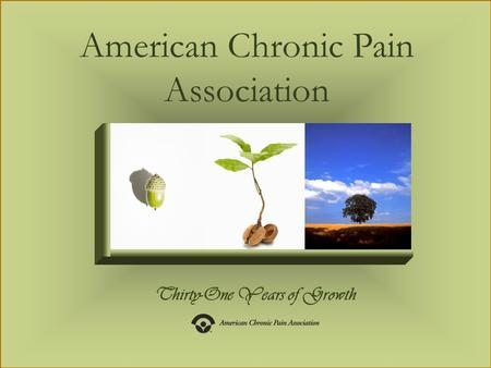 Thirty-One Years of Growth American Chronic Pain Association.