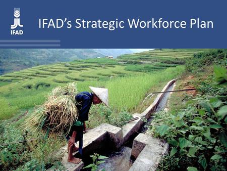 IFAD's Strategic Workforce Plan. The SWP in IFAD's planning and performance management system The SWP is IFAD's first exercise in planning human resources.
