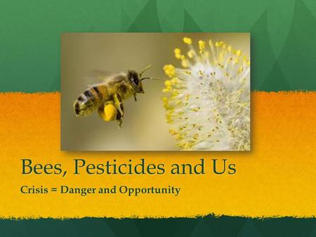 Bees, Pesticides and Us Crisis = Danger and Opportunity.