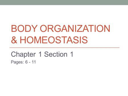 BODY ORGANIZATION & HOMEOSTASIS Chapter 1 Section 1 Pages: 6 - 11.