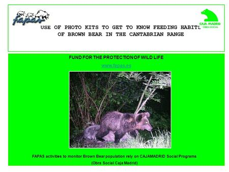 FUND FOR THE PROTECTION OF WILD LIFE www.fapas.es USE OF PHOTO KITS TO GET TO KNOW FEEDING HABITS OF BROWN BEAR IN THE CANTABRIAN RANGE FAPAS activities.
