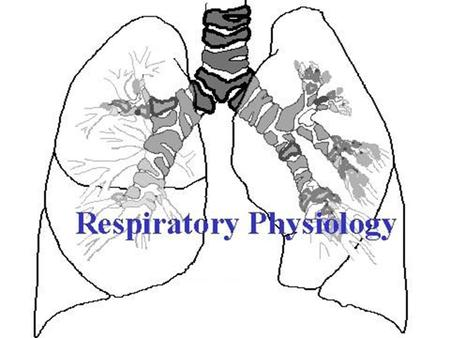 1. 2 Part 1 Structure and Function of the Respiratory System When you can not breath, nothing else matters Slogan of the American Lung Association.
