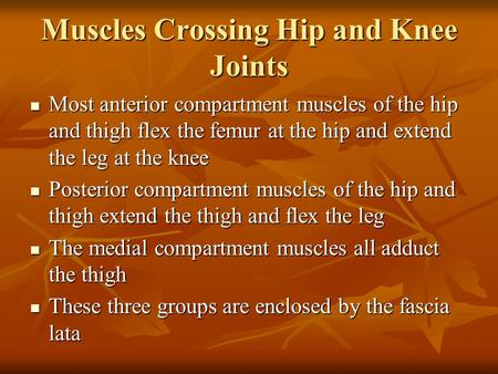 Muscles Crossing Hip and Knee Joints Most anterior compartment muscles of the hip and thigh flex the femur at the hip and extend the leg at the knee Most.