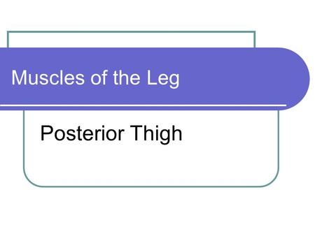 Muscles of the Leg Posterior Thigh. Hamstring semimembranosus orange Origin ischium Insertion medial tibia Action flex knee.