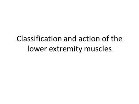 Classification and action of the lower extremity muscles.