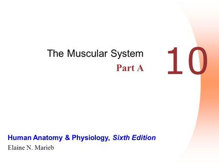 Human Anatomy & Physiology, Sixth Edition Elaine N. Marieb 10 The Muscular System Part A.