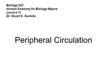 Biology 323 Human Anatomy for Biology Majors Lecture 11 Dr. Stuart S. Sumida Peripheral Circulation.