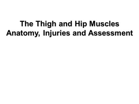 The Thigh and Hip Muscles Anatomy, Injuries and Assessment Sports Medicine Camp.