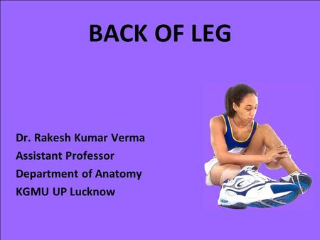 BACK OF LEG Dr. Rakesh Kumar Verma Assistant Professor