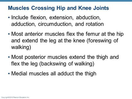 Copyright © 2010 Pearson Education, Inc. Muscles Crossing Hip and Knee Joints Include flexion, extension, abduction, adduction, circumduction, and rotation.