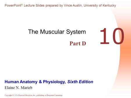 The Muscular System Part D