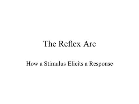 The Reflex Arc How a Stimulus Elicits a Response.