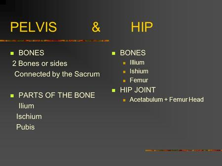 PELVIS & HIP BONES 2 Bones or sides Connected by the Sacrum PARTS OF THE BONE Ilium Ischium Pubis BONES Illium Ishium Femur HIP JOINT Acetabulum + Femur.