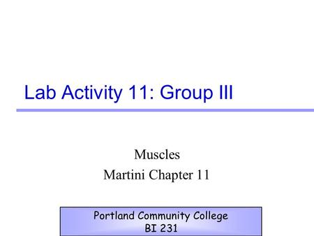 Lab Activity 11: Group III Muscles Martini Chapter 11 Portland Community College BI 231.