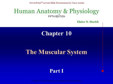 Chapter 10 The Muscular System Part I.