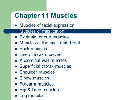 Chapter 11 Muscles Muscles of facial expression Muscles of mastication
