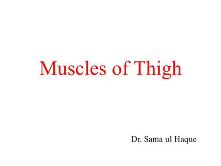 Muscles of Thigh Dr. Sama ul Haque. Objectives Know the type and formation of hip joint. Differentiate the stability and mobility between the hip joint.