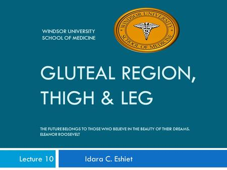 GLUTEAL REGION, THIGH & LEG THE FUTURE BELONGS TO THOSE WHO BELIEVE IN THE BEAUTY OF THEIR DREAMS. ELEANOR ROOSEVELT Lecture 10 Idara C. Eshiet WINDSOR.
