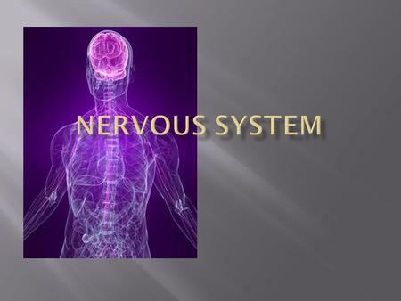 "The function of the nervous system is to control the body by sending signals from cell to another. ""cell communica tion"""
