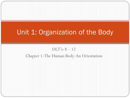 DLT's: 8 – 12 Chapter 1: The Human Body: An Orientation Unit 1: Organization of the Body.