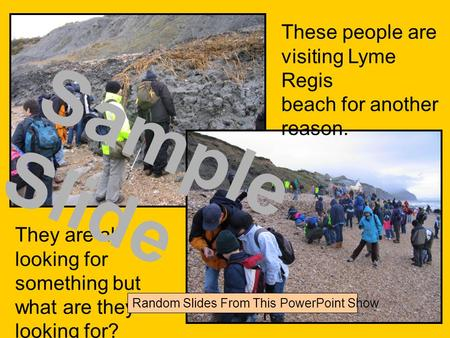 These people are visiting Lyme Regis beach for another reason. They are all looking for something but what are they looking for? Sample Slide Random Slides.