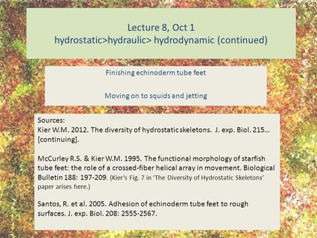 Lecture 8, Oct 1 hydrostatic>hydraulic> hydrodynamic (continued) Finishing echinoderm tube feet Moving on to squids and jetting Sources: Kier W.M. 2012.