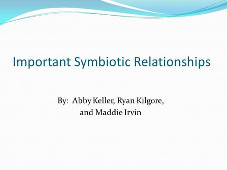 Important Symbiotic Relationships By: Abby Keller, Ryan Kilgore, and Maddie Irvin.