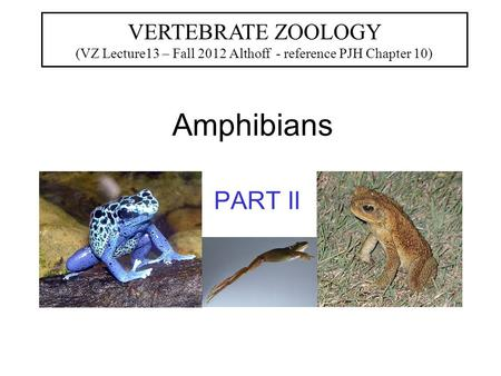 Amphibians PART II VERTEBRATE ZOOLOGY (VZ Lecture13 – Fall 2012 Althoff - reference PJH Chapter 10)