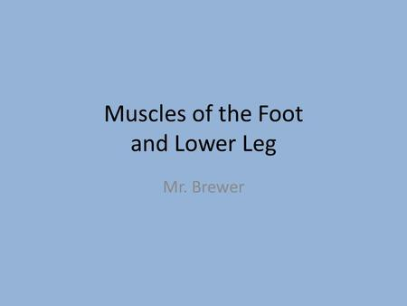 Muscles of the Foot and Lower Leg Mr. Brewer. Movements There are 6 major movements that take place in the lower leg to the foot. What are they?