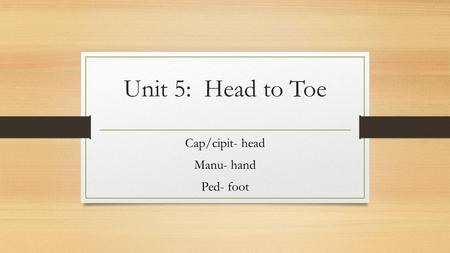 Cap/cipit- head Manu- hand Ped- foot