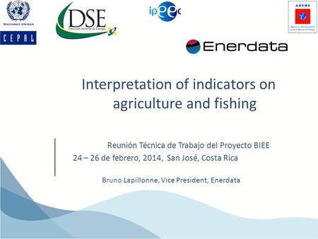 Interpretation of indicators on agriculture and fishing Bruno Lapillonne, Vice President, Enerdata Reunión Técnica de Trabajo del Proyecto BIEE 24 – 26.