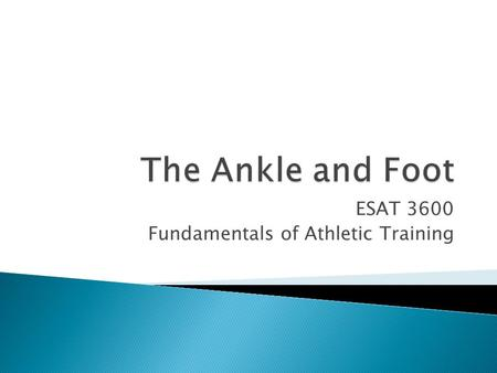 ESAT 3600 Fundamentals of Athletic Training.  Tibiofibular joint  Ankle (Talocrural) joint ◦ Distal end of tibia fibula & Talus  Subtalar joint  Divisions.