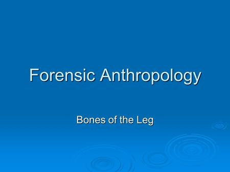 Forensic Anthropology Bones of the Leg. Skeletal anatomy of the leg Comprised of 4 bones Femur Femur Tibia Tibia Fibula Fibula Patella Patella Useful.