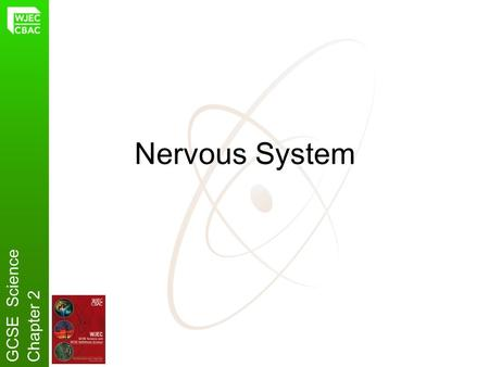 Nervous System GCSE ScienceChapter 2. Why do animals have a Nervous System? Animals need to be aware of changes in their surroundings. GCSE ScienceChapter.