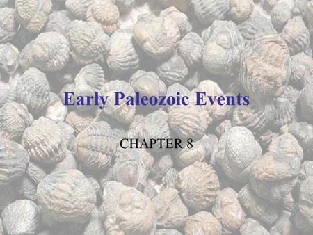 Early Paleozoic Events CHAPTER 8. In the Beginning (of the Paleozoic…) Phanerozoic = visible life. Refers to rocks younger than the Precambrian. 540.