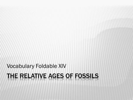Vocabulary Foldable XIV.  The preserved remains, trace, or imprint of an ancient organism.