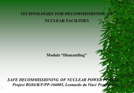 1 TECHNOLOGIES FOR DECOMMISSIONING OF NUCLEAR FACILITIES SAFE DECOMMISSIONING OF NUCLEAR POWER PLANTS Project BG04/B/F/PP-166005, Leonardo da Vinci Programme.