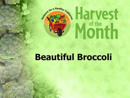 Beautiful Broccoli.