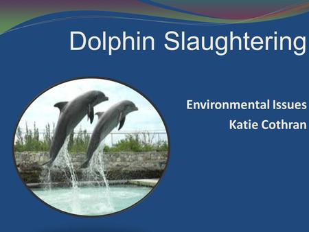 Dolphin Slaughtering Environmental Issues Katie Cothran.
