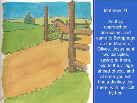 Matthew 21 As they approached Jerusalem and came to Bethphage on the Mount of Olives, Jesus sent two disciples, saying to them, Go to the village ahead.