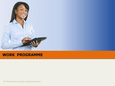 WORK PROGRAMME © The Centre for Economic and Social Inclusion.