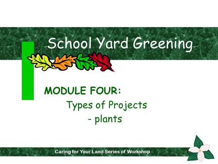 School Yard Greening MODULE FOUR: Types of Projects - plants Caring for Your Land Series of Workshops Caring for Your Land Series of Workshop.