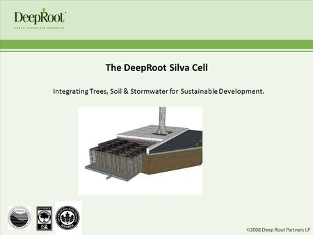 The DeepRoot Silva Cell Integrating Trees, Soil & Stormwater for Sustainable Development.