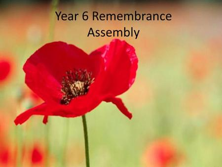 Year 6 Remembrance Assembly. Welcome to Year 6's Remembrance assembly. This year, 2014, is very important as it is one hundred years since we started.